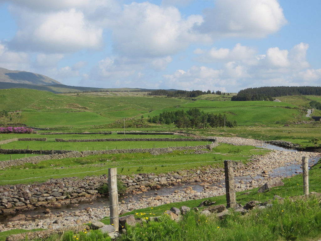A rocky stream flows through the rolling hills of Connemara, County Galway, Ireland, where many Irish immigrants who settled in Portland were born.