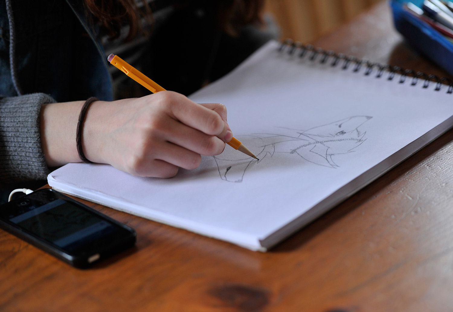 essay about advantages and disadvantages of homeschooling