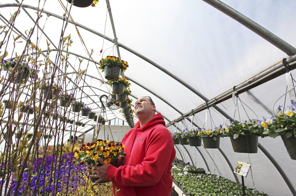 Tom Estabrook of Estabrook's garden center in Yarmouth says the proposed pesticide ban could set a bad precedent.