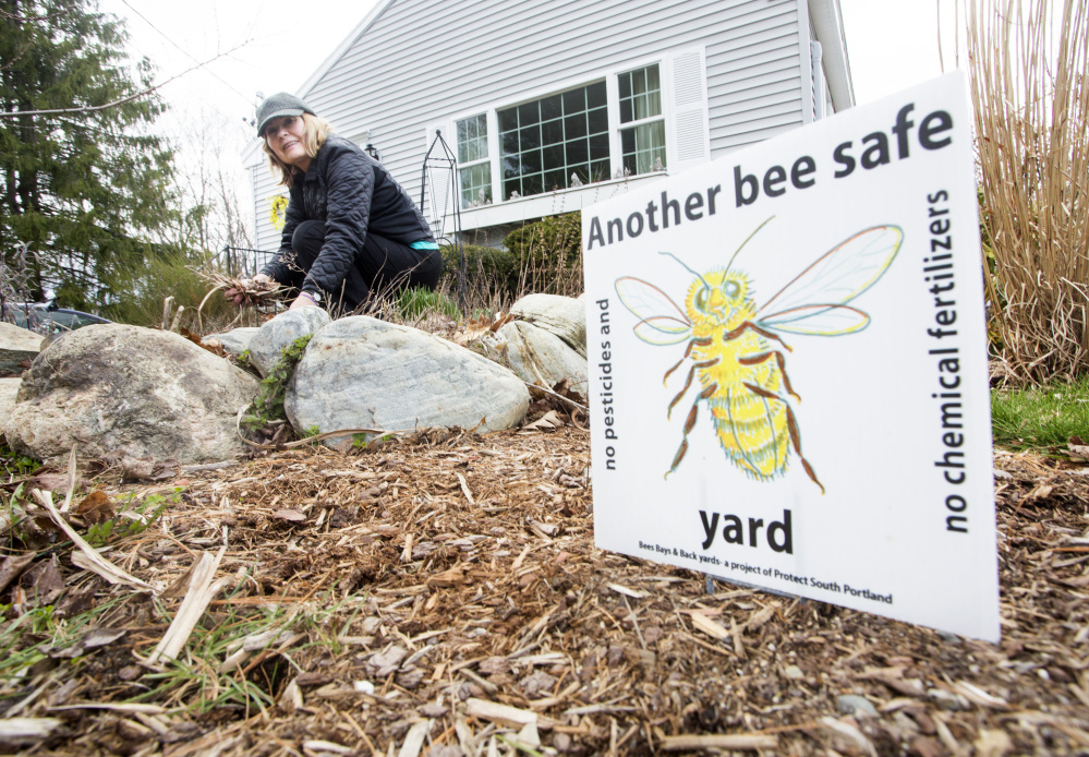 "Cathy Chapman, a master gardener and coordinator of the group backing the South Portland pesticides ban, says ""it's the wave of the future for a healthy and sustainable world."""