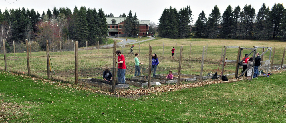 People work inside the fence preparing the plot Friday at the University of Maine at Augusta garden.