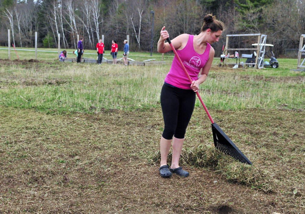 Erika King rakes up after another volunteer ran a string trimmer over the plot Friday at the University of Maine at Augusta community garden.