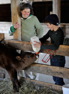 Ada Tholen 11, feeds milk to a calf as assistant farm manager Hilary Crowell looks.