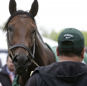 The Belmont Stakes will be without Nyquist for the June 11 race. Nyquist will return to California but may be in New York in August for the Travers Stakes at Saratoga.   The Associated Press