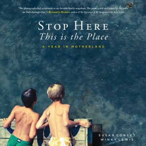 859058_927715 Stop Here book cover.jpg