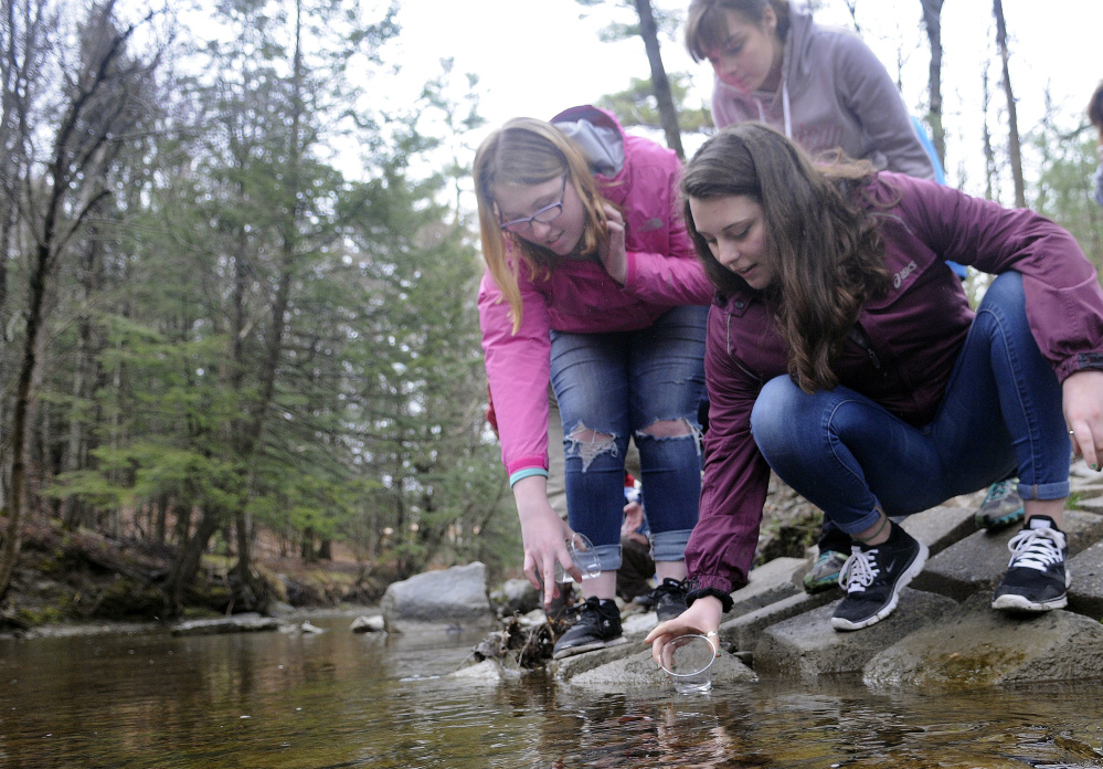 Messalonskee High School students Serena Collins, right, Elizabeth Newman, background, and Mariah Bernard release Atlantic salmon on Monday into Bond Brook in Augusta.