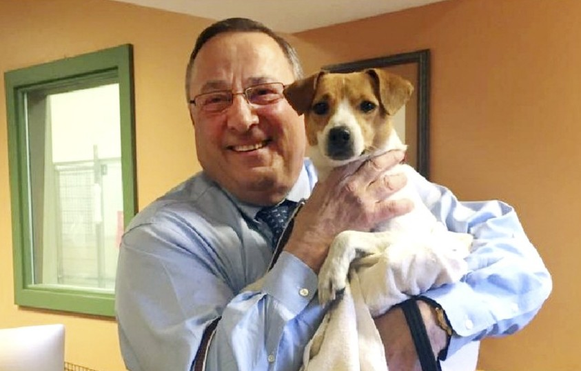 "Gov. Paul LePage  adopted a new ""first dog"" from the Greater Androscoggin Human Society and named the Jack Russell terrier mix Veto."