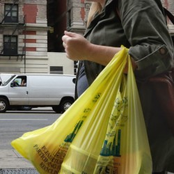 HFS BY KAREN MATTHEWS - A woman carries her purchase in plastic bags from a Gristedes supermarket on New York's Upper West Side, Thursday, May 5, 2016. Merchants in New York who now hand out billions of free, disposable plastic bags each year to shoppers and diners would have to start charging 5 cents each for the convenient but environmentally unfriendly receptacles under a bill set for a city council vote Thursday. (AP Photo/Richard Drew)