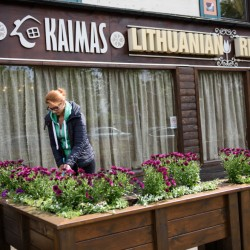 Simona Budvyte, 27, sweeps the patio of Kaimas before setting up for lunch in Peterborough, England, recently.