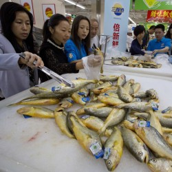 Shoppers examine fish on sale at a Wal-Mart in Shenzhen, China. Getting the food business right in China is critical to Wal-Mart's growth plans, and that's made more challenging by consumers who are renowned for their mistrust of goods providers.