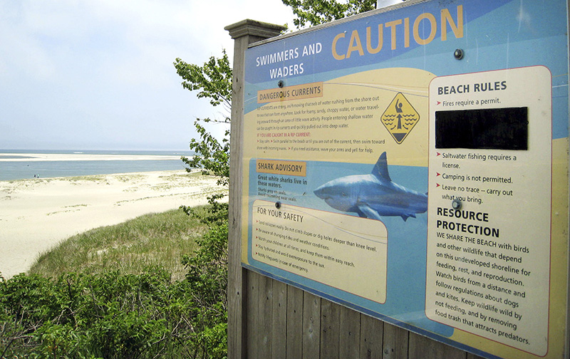A sign at Chatham Lighthouse Beach beach warns of dangerous currents and sharks.