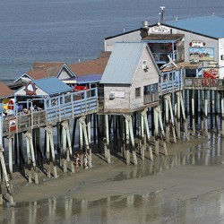 OLD ORCHARD BEACH, ME - JULY 24: The Old Orchard Beach pier rises above sunbathers Thurs. July 24, 2014. (Photo by Amelia Kunhardt/Staff Photographer)