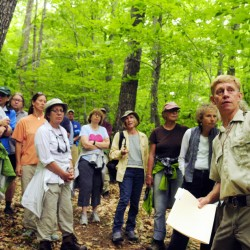 Department of Inland Fisheries and Wildlife Forester Eric Hoar gives a tour of areas that will be cut at Jamies Pond Wildlife Management Area in Hallowell on Tuesday.