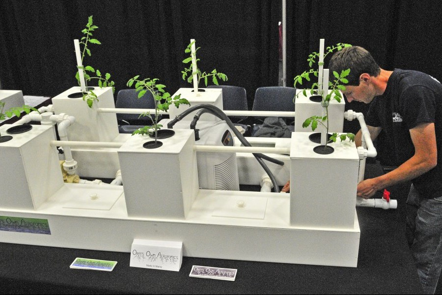 Dylan Orff, owner of Orff's Own Aeroponics, sets up his company's booth Friday for the Medical Marijuana Caregivers of Maine trade show at the Augusta Civic Center, which runs Saturday and Sunday. The tomato plant roots are suspended from a basket and sprayed with water inside the boxes in the setup. Show rules don't allow people to bring live marijuana plants inside.