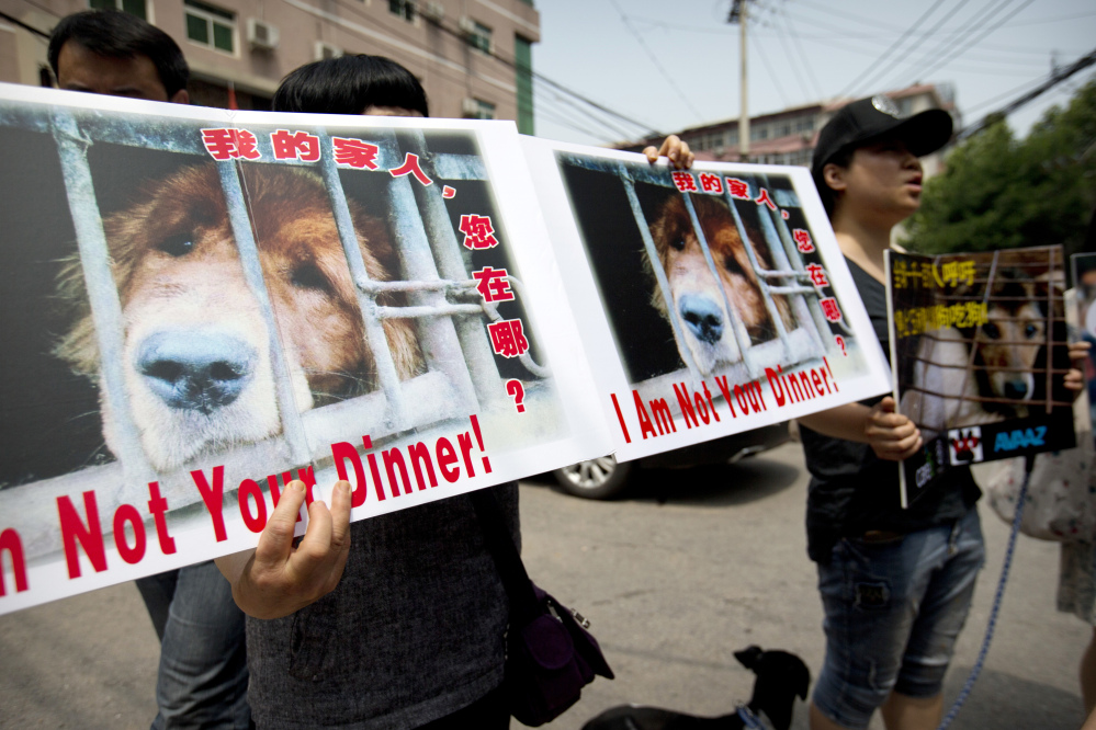 Animal rights advocates protest Friday outside the Yulin government office in Beijing, China, where they delivered a petition urging an end to the annual Yulin dog-meat festival.