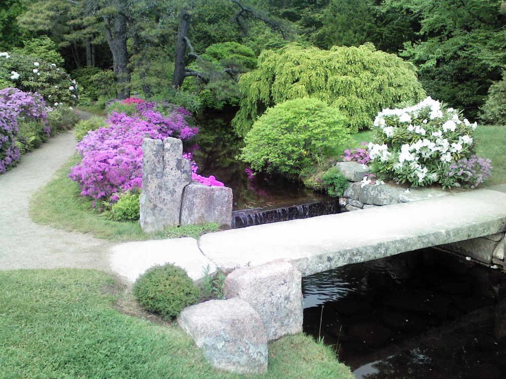 The Asticou Azalea Garden will be open through Oct. 31 in Northeast Harbor.