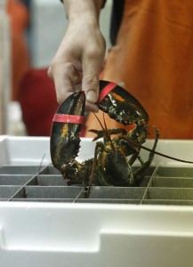 Using all seafood parts transforms waste into wealth, a reader says. For example, a polymer in lobster shells has varied applications in business.