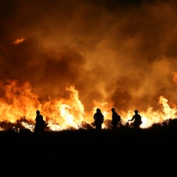 Firefighters light backfires Thursday to counter a fast-moving, ferocious fire near Lake Isabella, Calif., as scorching heat and tinder-dry conditions create dangerous conditions. Associated Press/Casey Christie, The Bakersfield Californian
