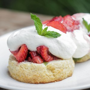 Shortcake is the epitome of good New England country cooking.