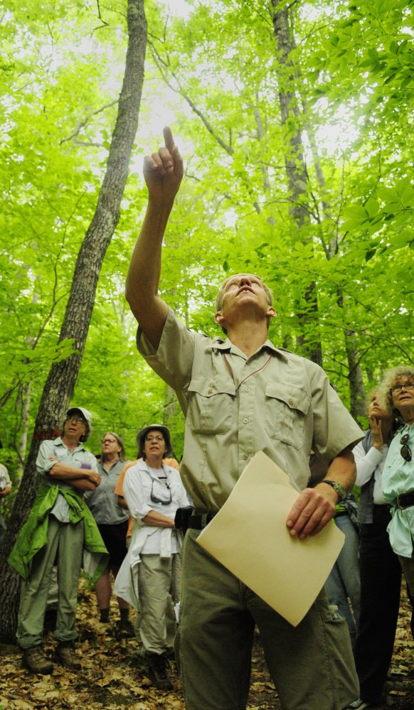 Department of Inland Fisheries and Wildlife biologist Eric Hoar points out trees that will be cut at Jamies Pond Wildlife Management Area in Hallowell on Tuesday.