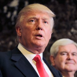 The presumptive Republican presidential nominee Donald Trump is said to be considering former House Speaker Newt Gingrich, right, to be his vice presidential running mate.