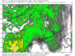 Some showers possible Saturday afternoon June 11th.