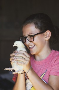 Althea McNulty gets up close with a two-week-old broiler chicken while visiting Underhill Farm.
