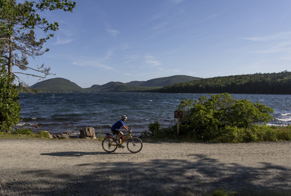 A geneticist at The Jackson Laboratory, Carol Bult also volunteers with the bike patrol of Mount Desert Island's Search and Rescue. Here, she cycles near Eagle Lake.