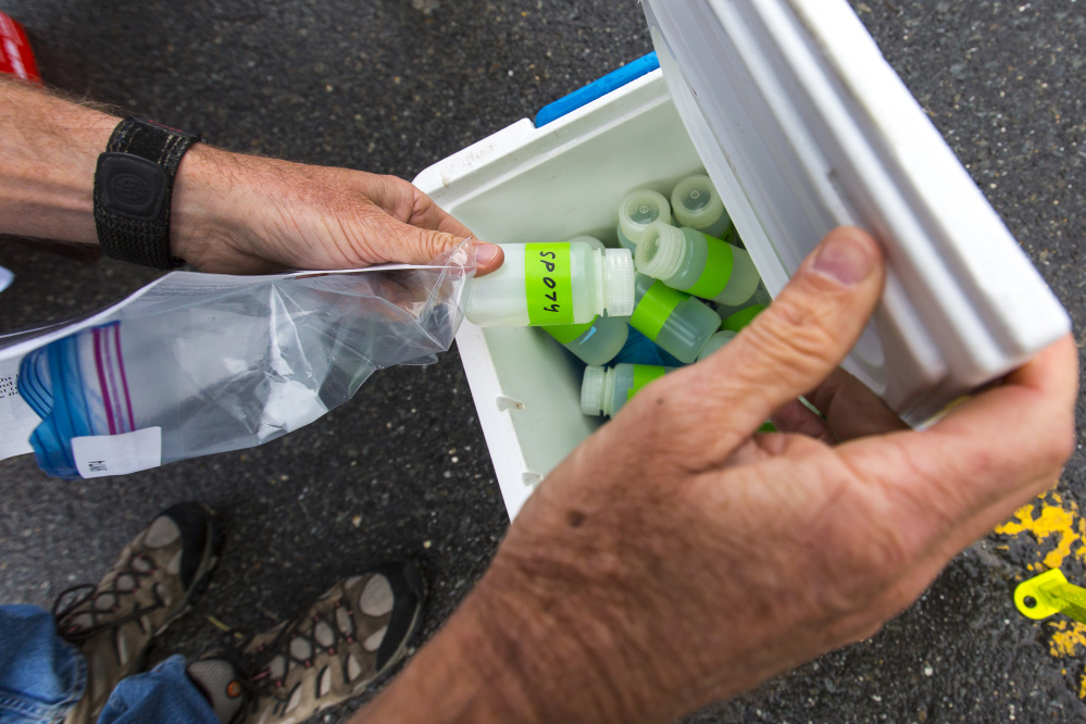 Peter Milholland, citizen steward coordinator for Friends of Casco Bay, places a water sample taken from the Fore River into a cooler. The samples will be tested for nitrogen content.