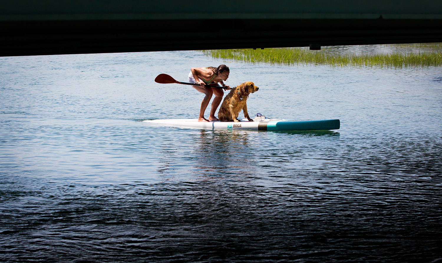 Willa Wirth of Portland ducks down while crossing under the Route 77 bridge in Scarborough on Friday while paddleboarding with her training partner, Oliver. Wirth was training for a paddleboarding race this weekend in New Hampshire.
