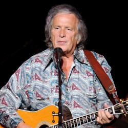 "Don McLean, best known for his hit ""American Pie,"" pleaded guilty to domestic violence charges on Thursday as part of a plea deal."
