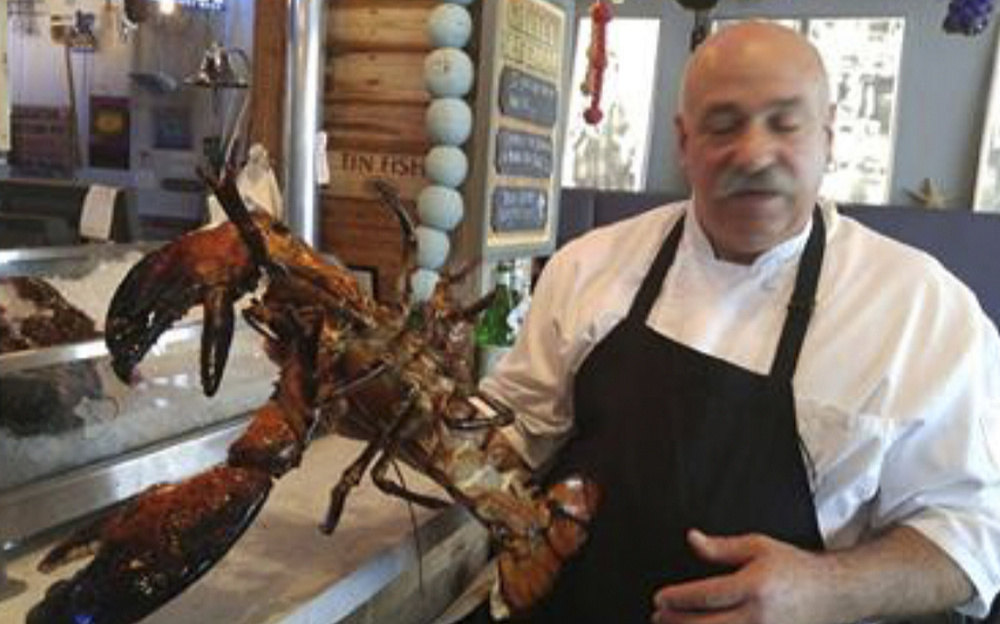 Larry the lobster, clawing at 15 minutes of fame, is headed to Maine - Portland Press Herald