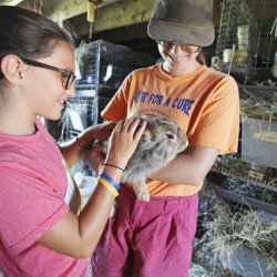 Althea McNulty, 11, of Falmouth feels the soft fur of an Angora rabbit held by Nancy Smith during Open Farm Day at Underhill Fiber Farm in Gorham.