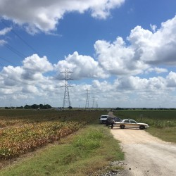 Police cars block access to the site where a hot air balloon crashed early Saturday near Lockhart, Texas. (Associated Press/James Vertuno)