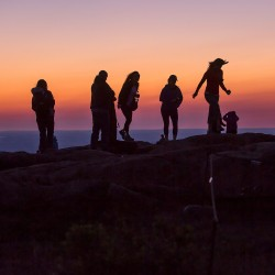 ACADIA NATIONAL PARK, ME - JUNE 27: People walk along the summit of Cadillac Mountain at dawn Monday, June 27, 2016. (Photo by Gabe Souza/Staff Photographer)