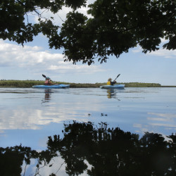 Nancye Tuttle of Wells, right, and Pam Parrott paddle along the Little River estuary in the Wells National Estuarine Research Reserve last Monday. The reserve offers guided kayak trips in the estuary two times a week. Parrott is a volunteer who assists kayakers on the trips.