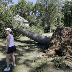 Marcia Thompson surveys damage in her neighborhood Monday in Concord, Mass. A tornado briefly touched down in the historic Massachusetts town, uprooting trees, knocking out power, and causing damage to dozens of homes. There were no reports of injuries.