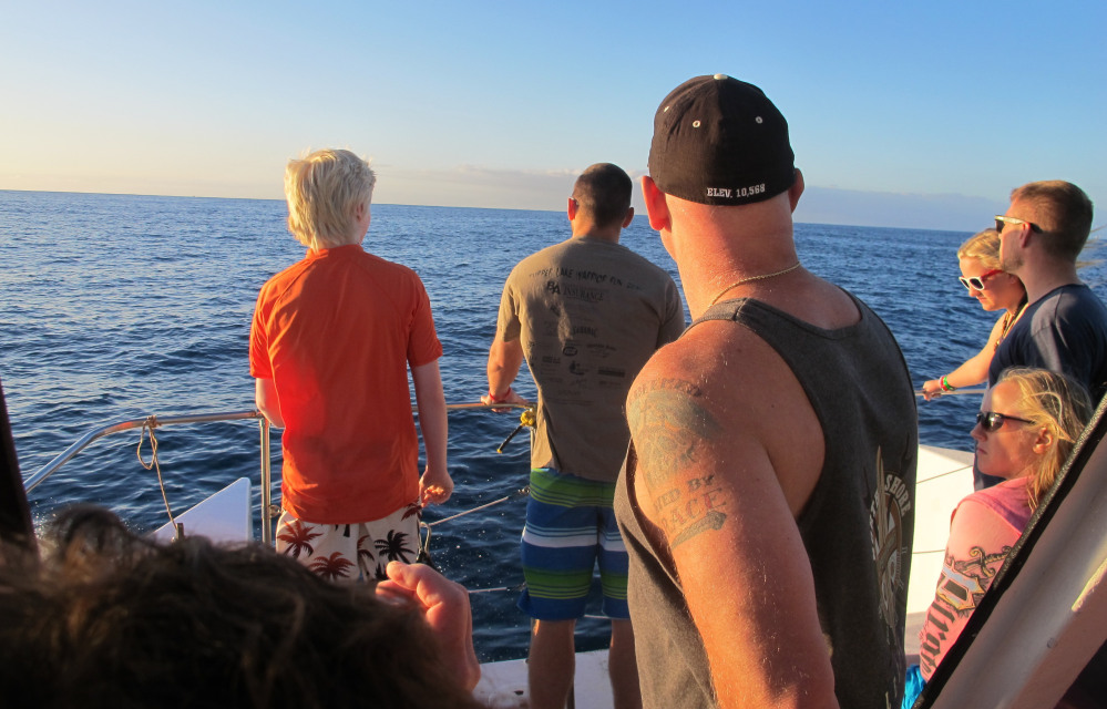Tourists look toward the horizon as their boat searches for dolphins in waters off Waianae, Hawaii, where swimming with the mammals is still legal.