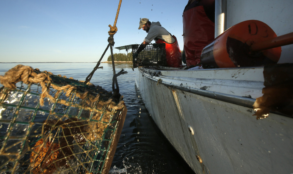 Lobstermen in maine 39 s historically open zone vote to close for Maine fishing laws