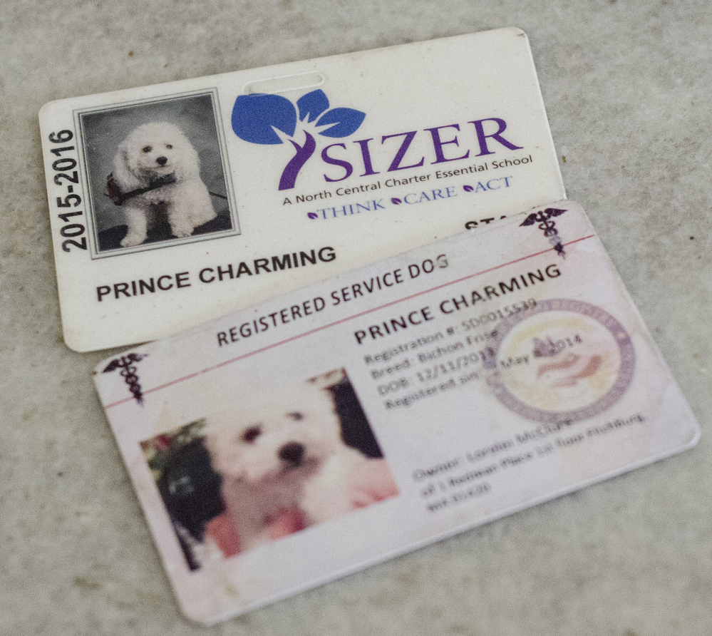 In addition to his identification cards, Prince Charming might be due service medals for the many times he's intervened when his owner was ailing.