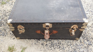 The cat was found locked in this trunk and a screwdriver was needed to free her.