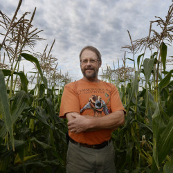 Dave Colson of MOFGA amid rows of corn growing at his Durham farmhouse.