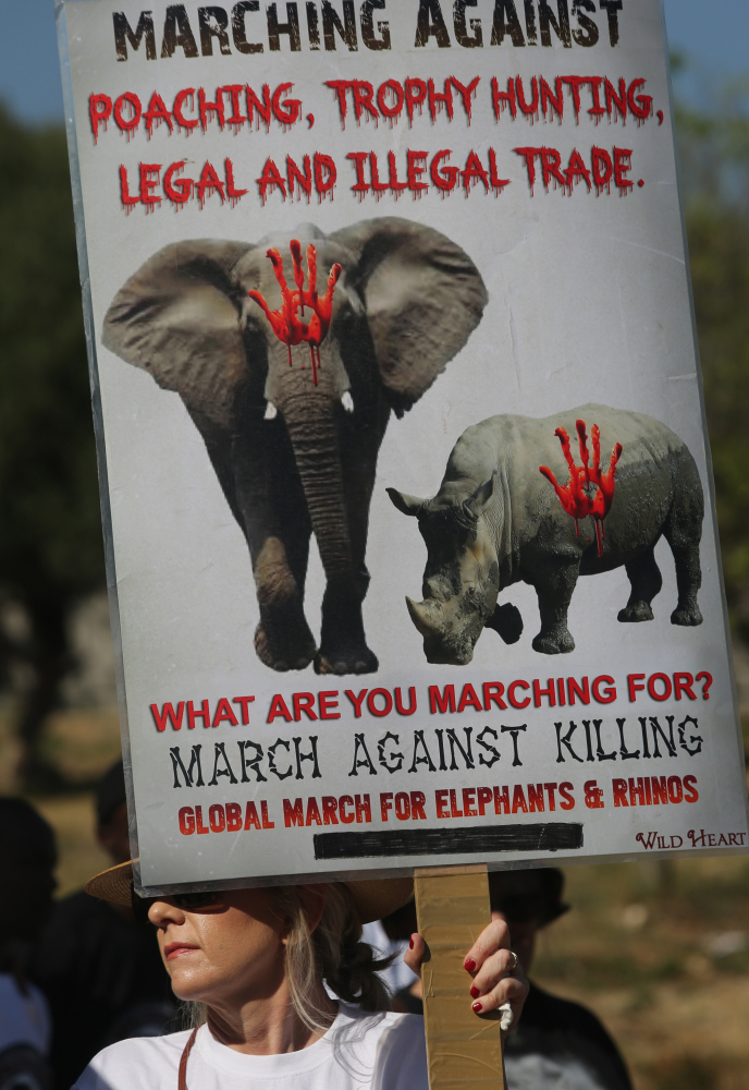 An activist marches to an international wildlife conference in South Africa on Saturday. Ivory poaching has remained at unacceptably high levels since 2010, organizers said.