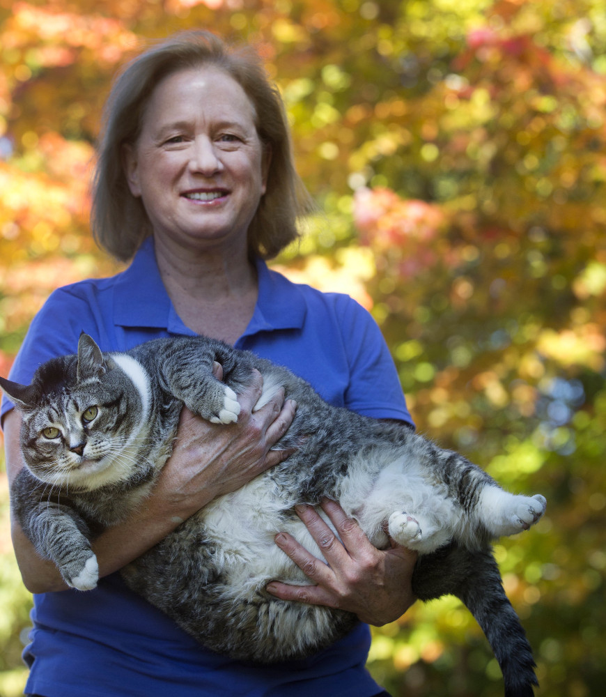 Susan Brunvand holds onto Logan, her 31-pound cat. The cat has been winning over hotel guests and recently internet viewers.