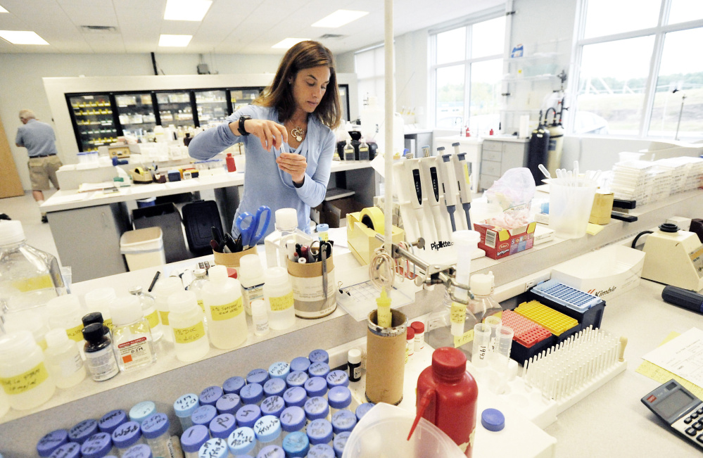 Stacy Cimino works to fill orders at ViroStat's lab. Doug McAllister, the company's president and founder, said that becoming the provider of antibodies for new Zika testing is