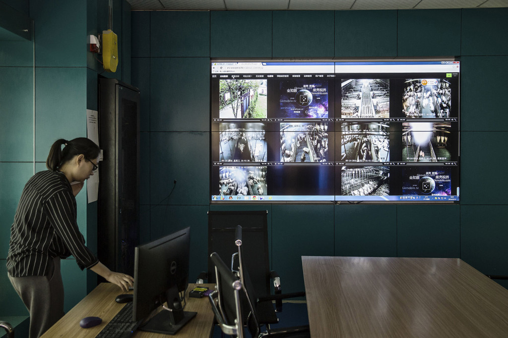 Screens display video footage from cameras monitoring pig pens at the Jia Hua antibiotic-free pig farm in Tongxiang, China, on Sept. 15, 2016. (MUST CREDIT: Bloomberg photo by Qilai Shen)