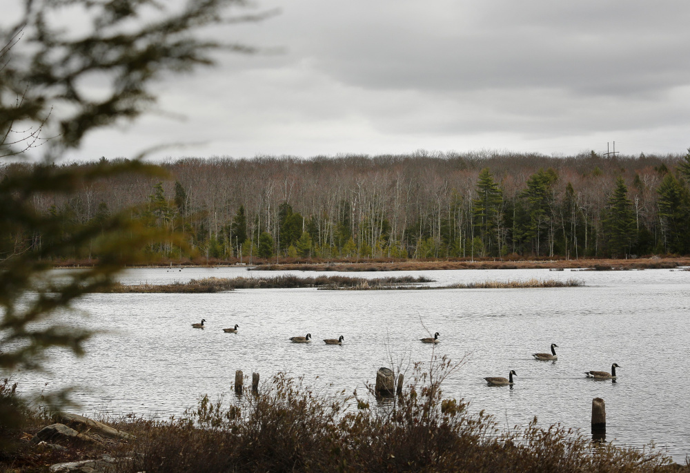 Rep. Michael Timmons of Cumberland was voted out last year, after siding with Gov. LePage in a dispute over conservation bonds that would have helped protect 215 acres around Knight's Pond in Cumberland and North Yarmouth.