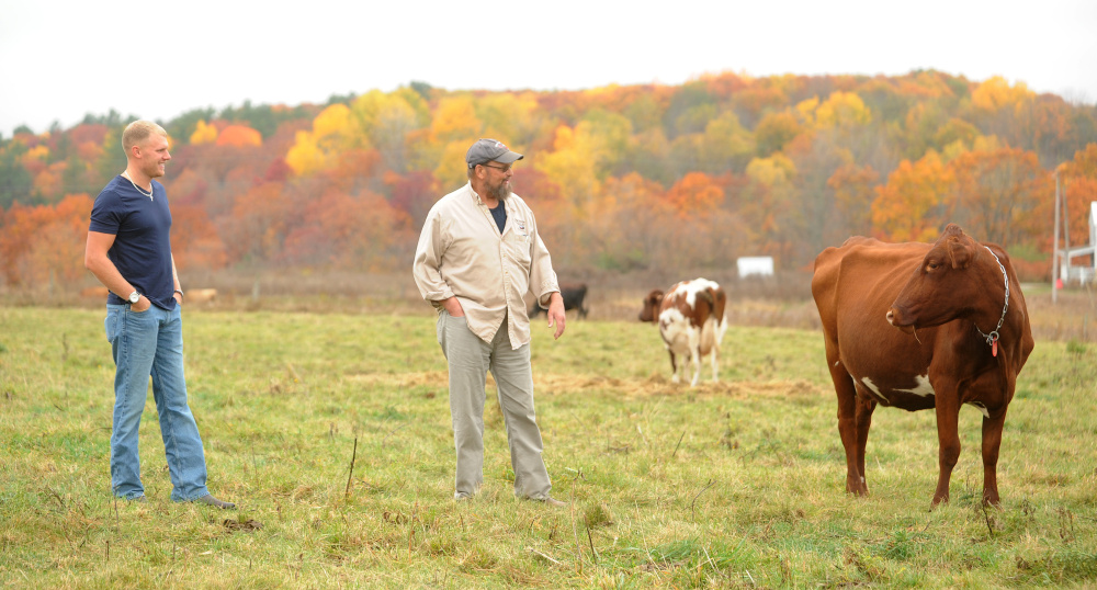 Steve Russell, center, and his son, Barrett, left, check in with the cows at the family's dairy farm in Winslow on Oct. 21. Russell's family farm is one of two applicants for a new program that seeks to keep farms in operation by forgiving property taxes.