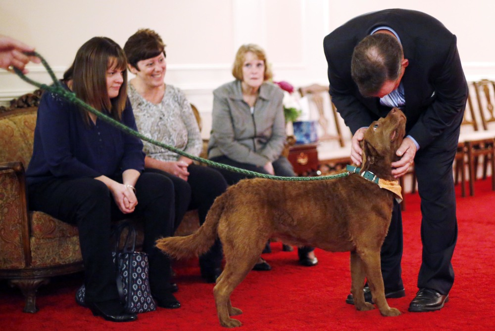 Tom VanBramer, right, and family members find solace in Greyce, a therapy dog, at a wake for his mother, Christine, at Dwyer Funeral Home in Pittsfield, Mass., on Oct. 16.