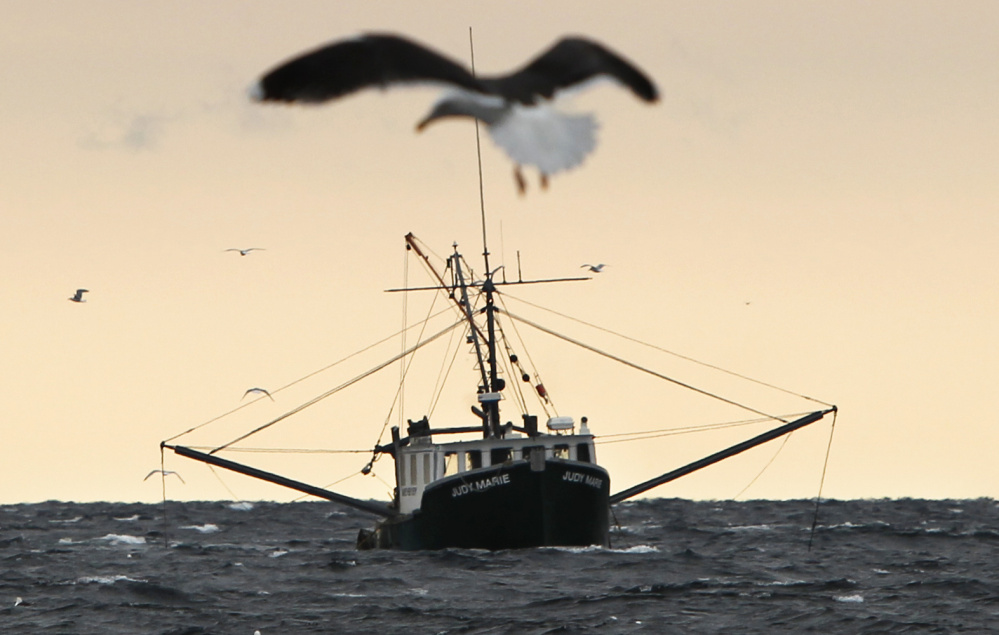 A shrimp fishing trawler works in the Gulf of Maine in 2012. Interstate regulators decided Thursday to keep the shrimping moratorim in effect for the 2017 season.